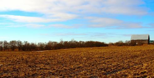 farmer's field mississauga